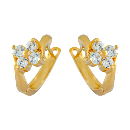 Picture of Gold Plated Earrings Jewellery (ER8659)