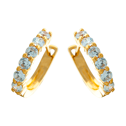Picture of Gold Plated Earrings Jewellery (ER8665)